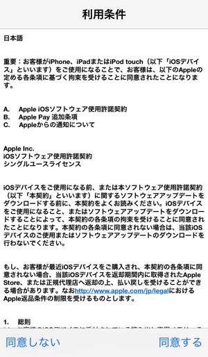 IMG_0101 copy