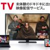 dTV使用レビュー、他の動画配信サービスとの比較