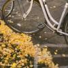 パパ!自転車に乗りたい!