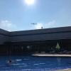 シンガポールのチャンギ空港のプールに入ってきた!